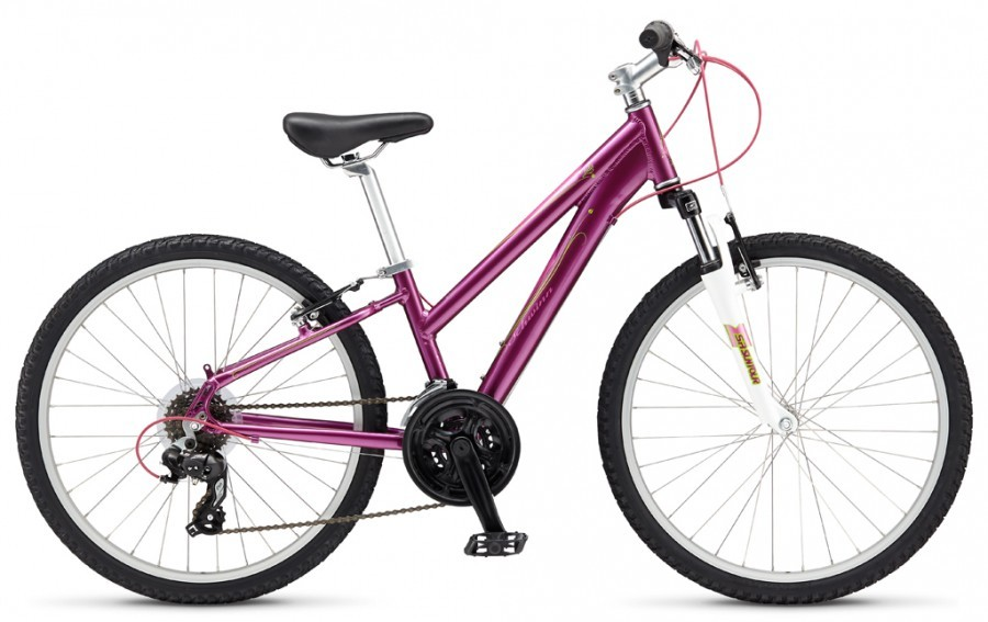 Велосипед Schwinn Lula 20 Girls (2015) Raspberry