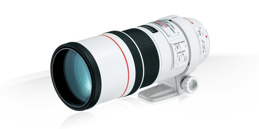 Объектив Canon EF 300 mm f/4.0 L IS USM